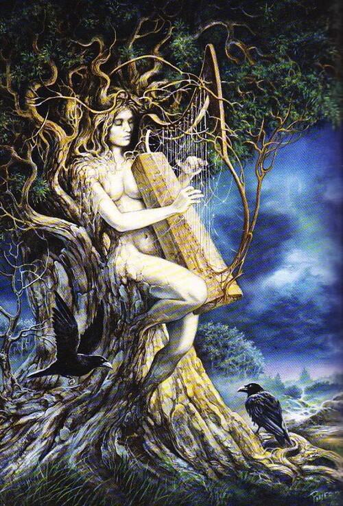 Le Bois de Musique