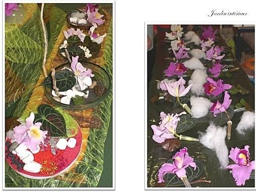 2012 03 13 jardin interieur floriscola (21)