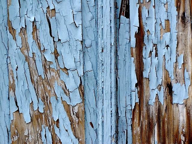 Les vieux bois 13 Marc de Metz 2012