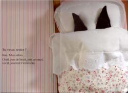 """TPS/PS/MS Exploitation langage /mises en scène de l'album """"Qui dort ici?"""" de Sabine De Greef"""