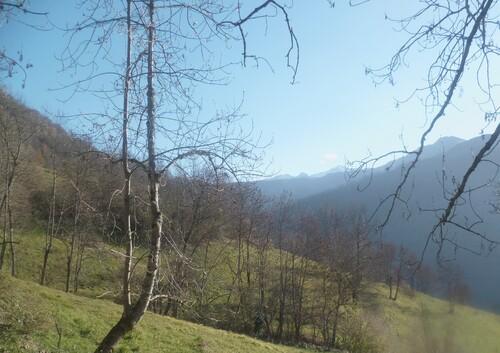 Tour du Castel Blancat (Oueil) - 31
