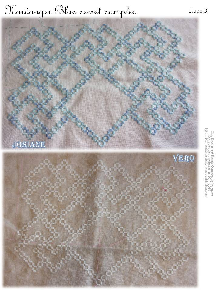 Hal The Blue Secret Hardanger Sampler de Vavi (3)