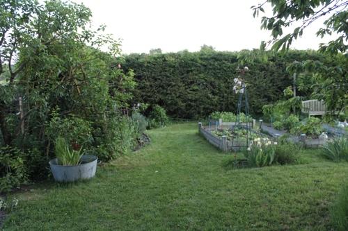 Jardin du soir