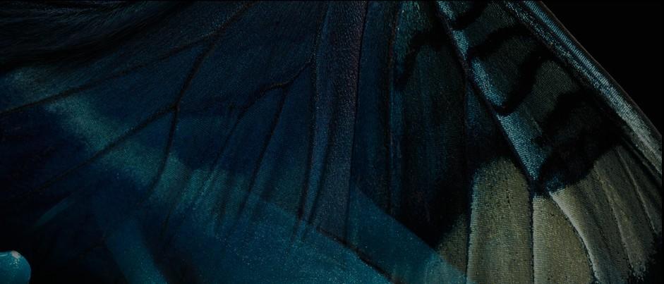 Code couleur automne-hiver 2011 : Le Bleu