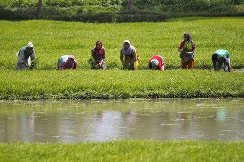 """Les inégalités freinent le développement de l'Inde (article du journal """"Le Monde"""", 21-12-2015)"""