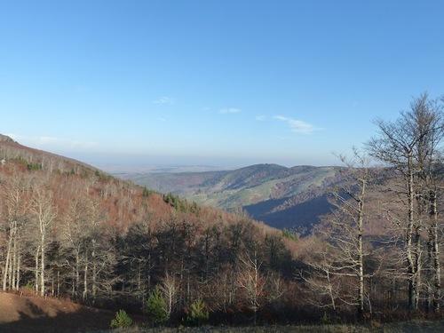Col de la Caumette (L'Espérou - Aigoual)