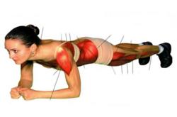 L'exercice de « Plank » muscle vos abdos et tout votre corps