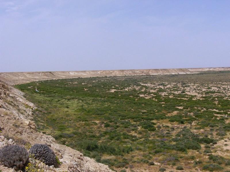 Tah - Smara (2)