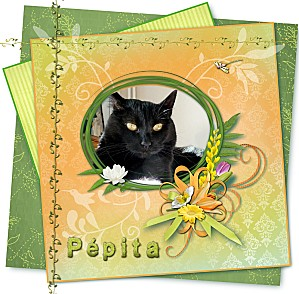 Scrap Pépita printemps-copie-1