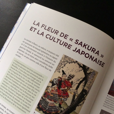 Cerisiers du Japon de Franck Sadrin...