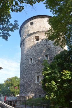 Estonie  - Pays Baltes - aout 2019