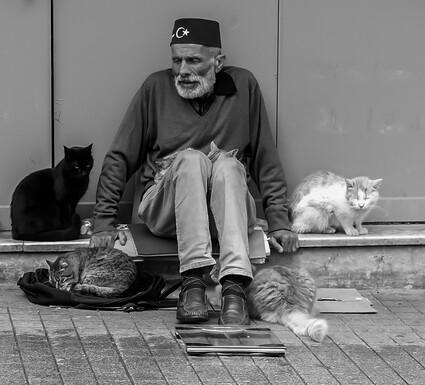06 - Des chats et des hommes