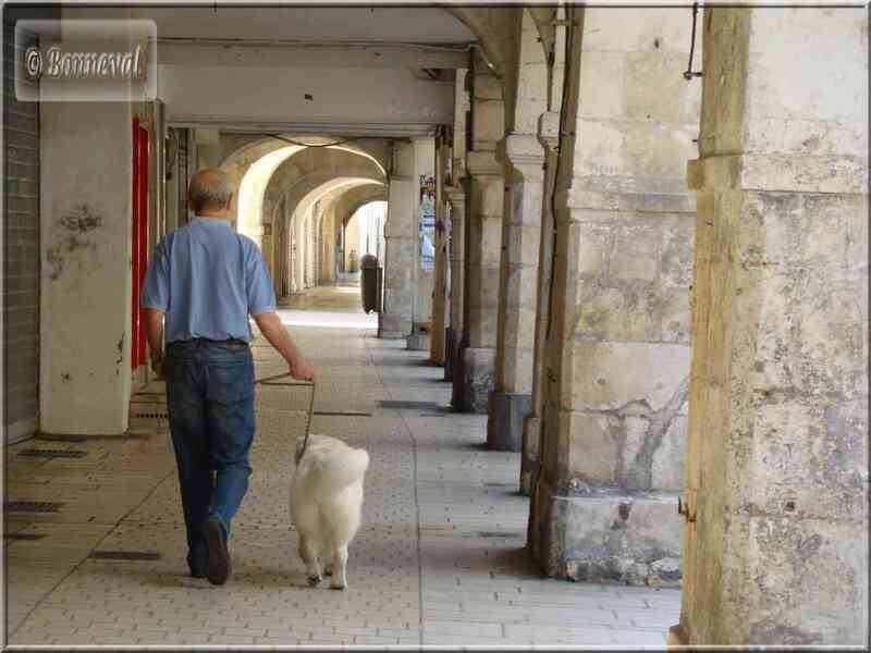 La Rochelle la rue des Merciers à arcades ou porches
