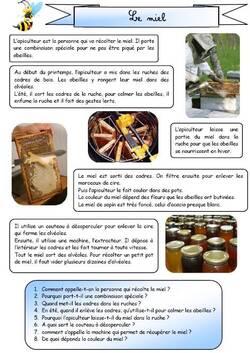Lecture documentaire CE1 (en images) récolte du miel