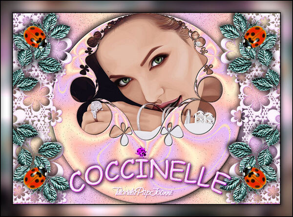 Tag Coccinelles
