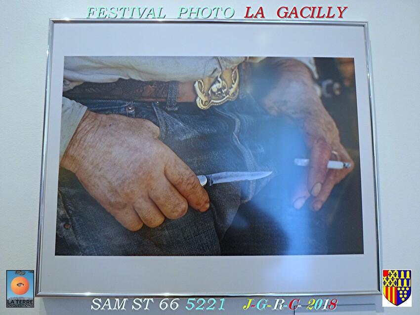 FESTIVAL  PHOTO  2018  LA  GACILLY   D   10/08/2018   1/4