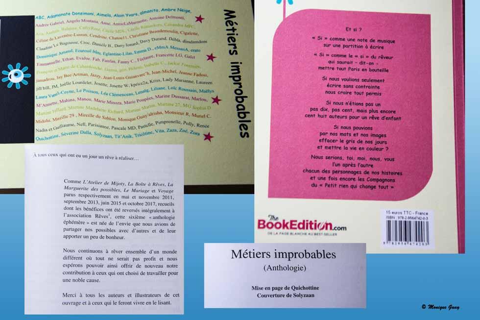 """Recueil """"Métiers improbables"""""""