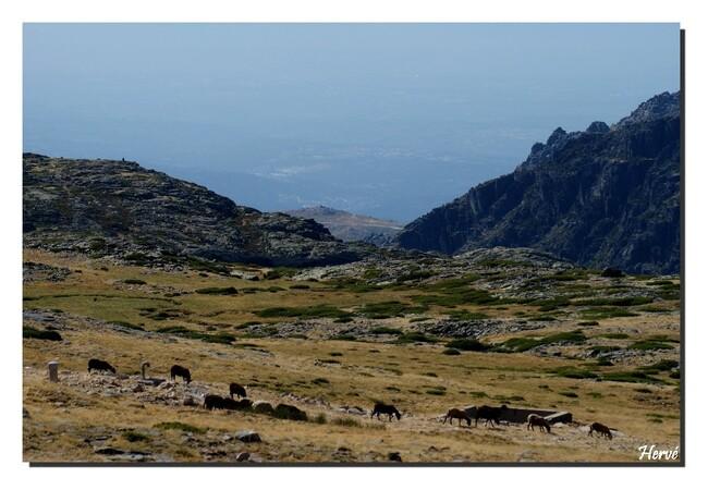 La Montagne de l'Etoile.