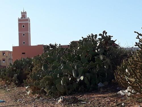 Le village e sa mosquée