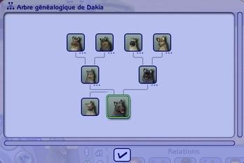 Laranns Family Dogs (En vue de la 15ième génération)