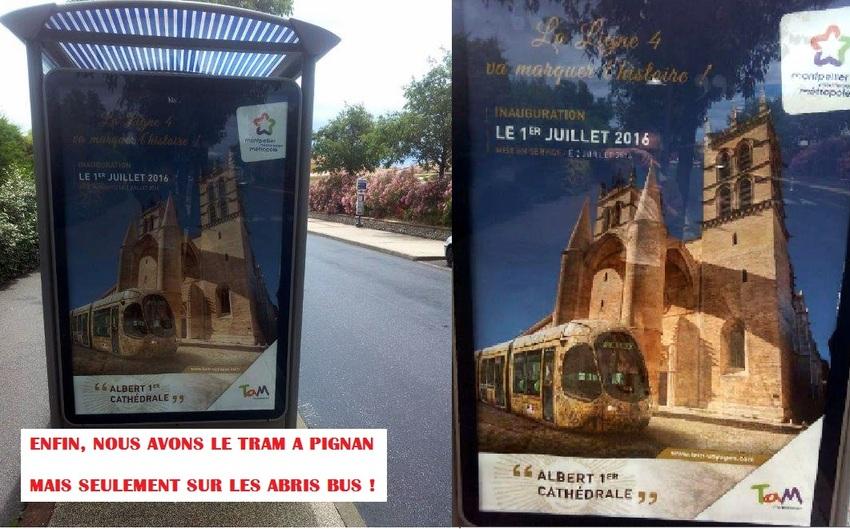 Le Tram à Pignan