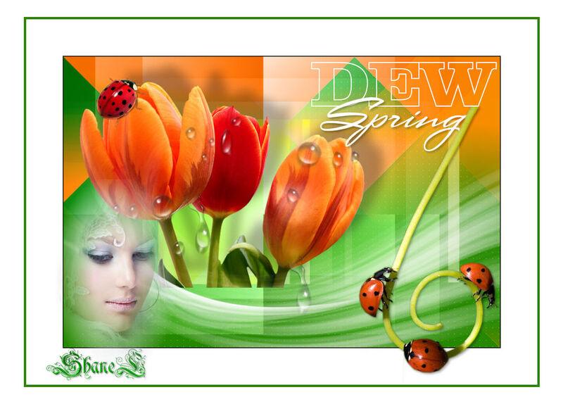 Dew Spring