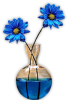 *** Blue Flowers ***
