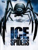 A Lost Mountain, une équipe de skieurs s'entraine pour les Jeux Olympiques. Ils ignorent que non loin de là, des scientifiques font des expériences sur des araignées. Devenues géantes, elles s'échappent et s'attaquent aux skieurs...  -----  Origine du film : Américain Réalisateur : Tibor Takacs Acteurs : Patrick Muldoon, Vanessa Williams (II), Thomas Calabro Genre : Science fiction Année de production : 2007 Titre Original : Ice Spiders