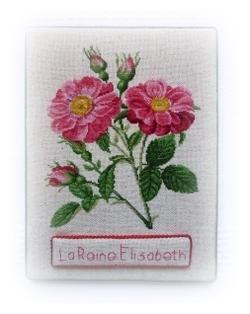 """La Reine Elisabeth"" fin"