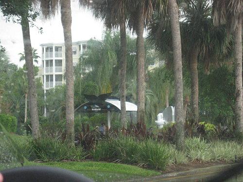 arret-de-bus---Floride--5-.jpg