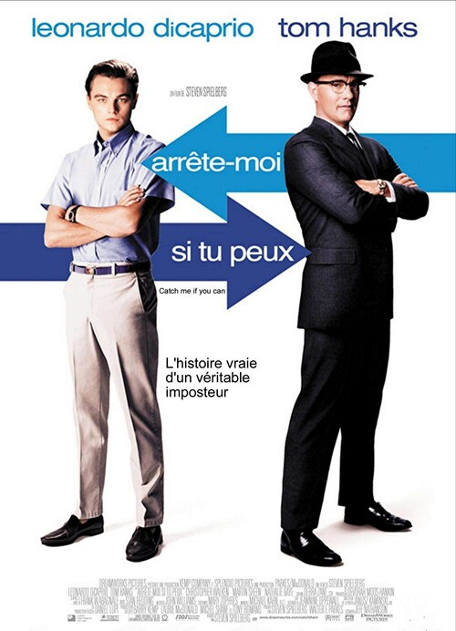 ARRETE MOI SI TU PEUX BOX OFFICE FRANCE 2003