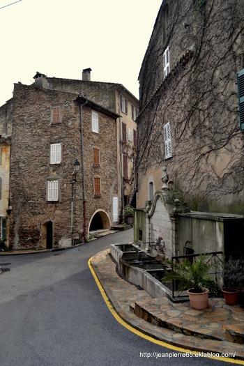 2014.03.25 La Garde-Freinet (département du Var).