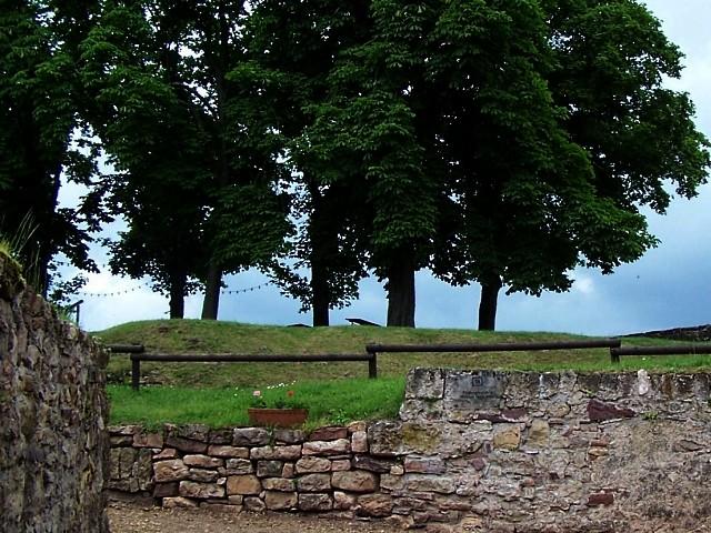 Sierck-les-Bains 3 mp1357 29 01 2011