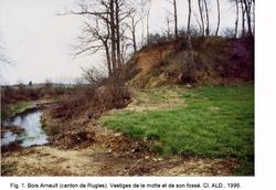 LES REMPARTS DE BOIS-ARNAULT (Eure)