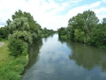 144-ancien lit du Rhin avant rectification par Tulla