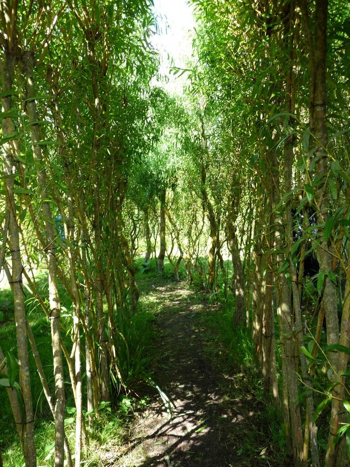 Le Jardin des Vertueux (Hortillonnages)