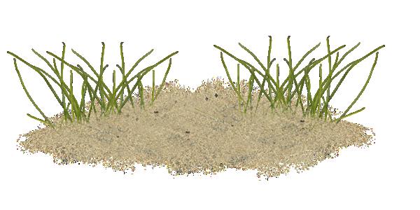 Tube sable