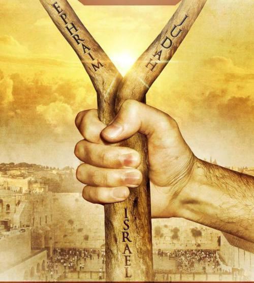 «L'Etat d'Israël» est-il «l'Israël de Elohim» ? (2ème partie)