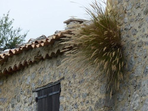 Le Hameau du Poil (Verdon)