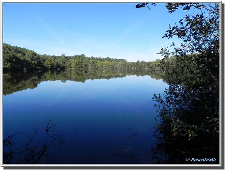 Lagune de Contaut