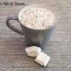 Mixer de la noix de coco fraîche au tmix