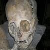 Le crâne découvert au Pérou 2