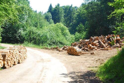 Le bois est emballé en stére