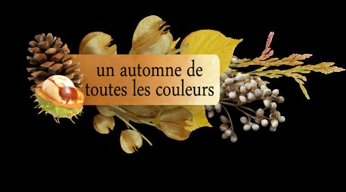 Petits Mots En Tourbillons Série1