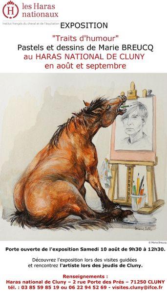 Exposition humour animalier, Marie Breucq