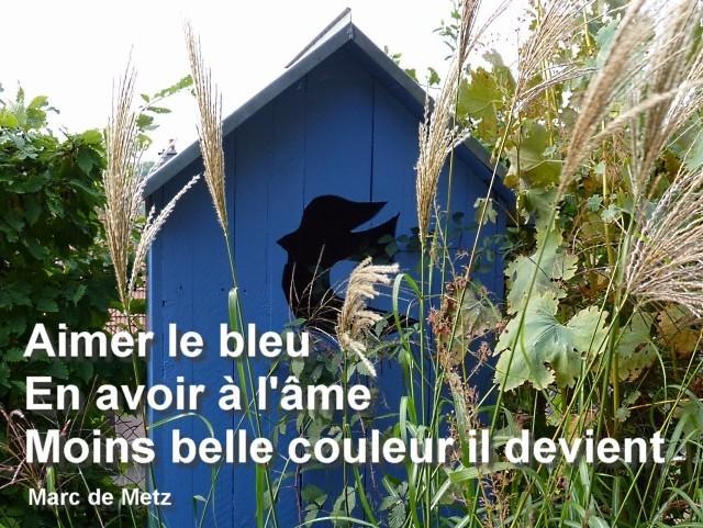 Senryû Bleus à l'âme 1 Marc de Metz 01 08 2011