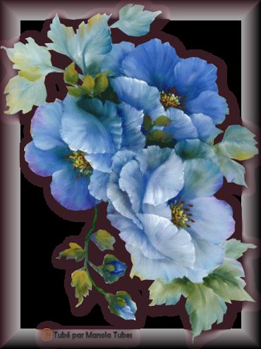 Tube fleurs 2943
