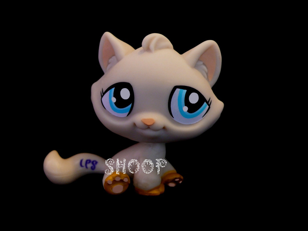LPS 1364