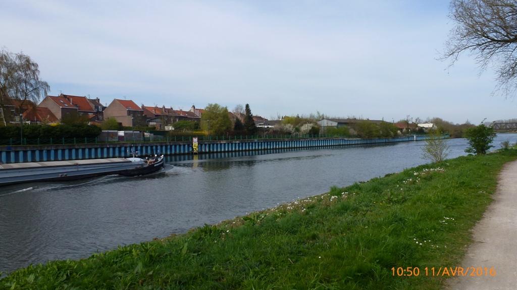 Promenade le long de la Deûle à Quesnoy-sur-Deûle