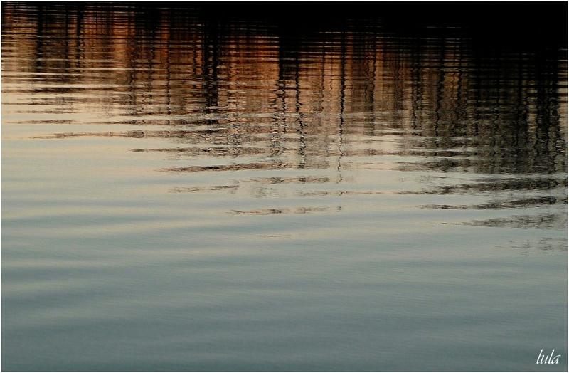 Reflets sur la Rivière des Prairies (#2)